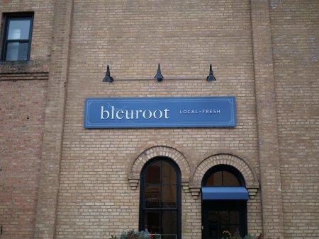 Bleuroot