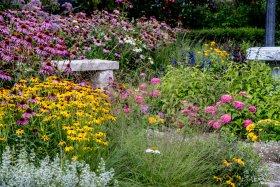NENA Butterfly Garden