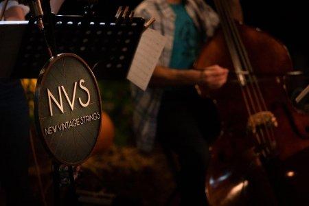 New Vintage Strings