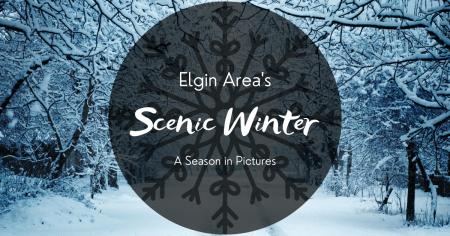 A Scenic Elgin Area Winter