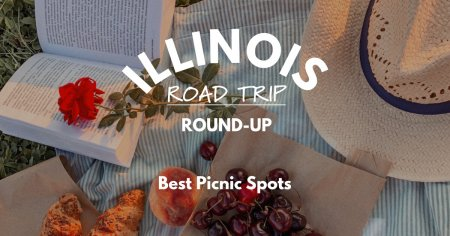 Illinois Road Trip Round-Up   Best Picnic Spots