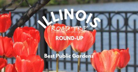 Illinois Road Trip Round-Up   Public Gardens